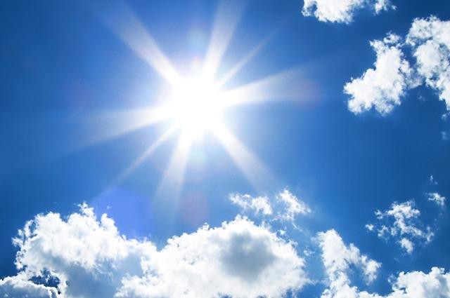 햇빛.jpg